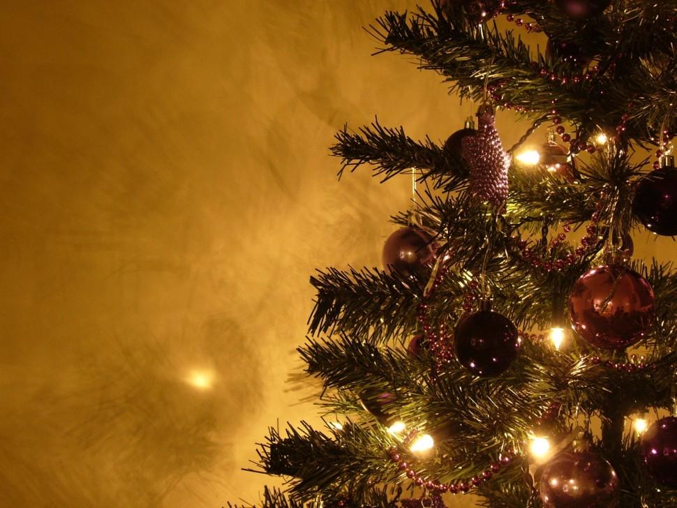 graham-s-christmas-tree-10-1308860
